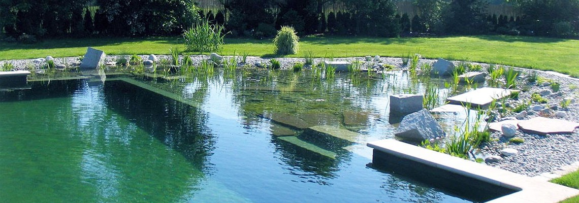 Swimming pool builders in kent oasis swimming pools - Natural swimming pool design ...